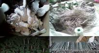 沈阳废锡线回收、废锡回收,稀有金属回收公司
