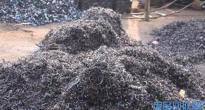 朝阳回收废镍锡珠、废镍珠、废锡珠、亚镍废粉公司